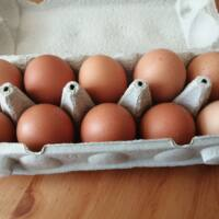 egy doboz tojás L - XL méret