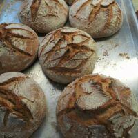 Kövön sült, kovászolt teljes kiörlésű kenyér