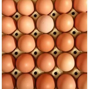 10 db M-es méretű házi tojás