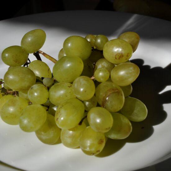 Éva szőlő